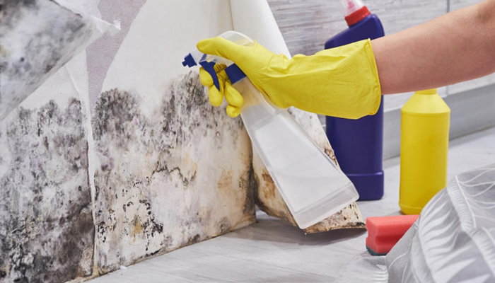 Prevent Dampness on Walls During Monsoons
